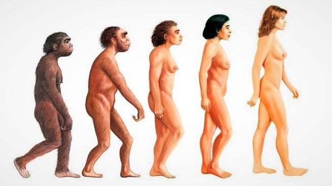 1152274-profimedia-0261331672-evolution-woman-upr-upr-653x367