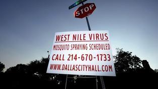 Texasem otřásá západonilská horečka, úřady hlásí stav nouze