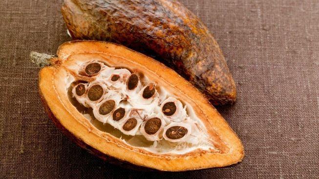 Prokázáno: Denní konzumace hořké čokolády snižuje krevní tlak