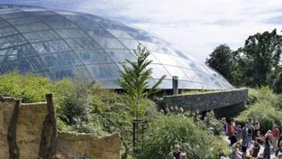 Pražská zoo je nejnavštěvovanějším turistickým cílem, předčila i Hrad