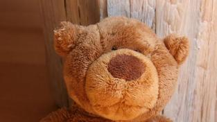Bělorusko mrazí styky se Švédskem kvůli plyšovým medvídkům