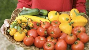 SZPI rozšiřuje kvůli strachu z nákazy kontroly čerstvé zeleniny