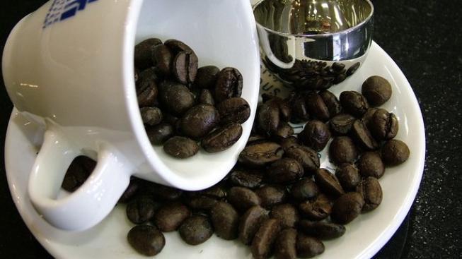 Káva v ohrožení – hrozbou jsou klimatické změny