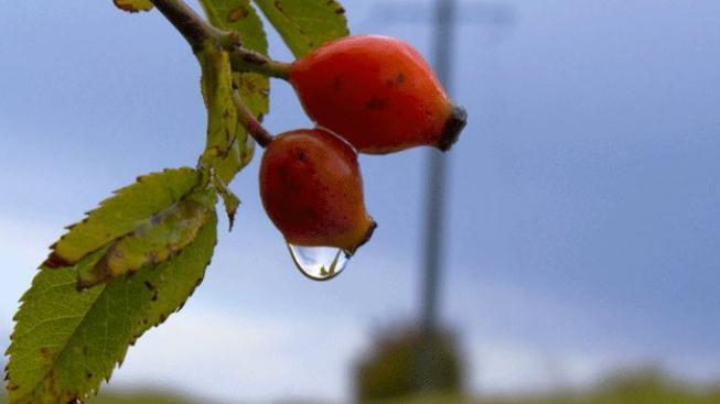 Letní počasí vystřídá po Velikonocích déšť a ochlazení