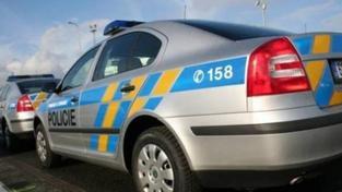 Policisté zatkli výtržníka, nadýchal téměř osm promile