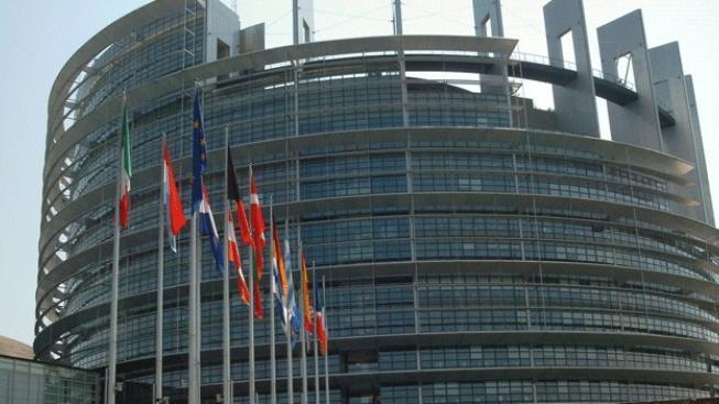 Sázky na volby: 15:1, že se do europarlamentu dostane Vandas