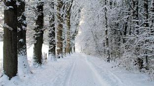 Kde bude bílý Štědrý den? Jen v Čechách. Sněžit začne odpoledne