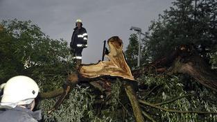 Škoda 15 milionů: Bouře v lesích Hradce zničila víc než roční těžbu