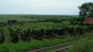 Malý průvodce maďarskými lázněmi: Bogács
