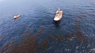 Ropná skvrna je u pobřeží USA, ničí deltu Mississippi