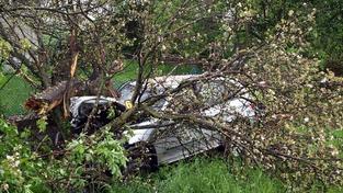 Řidič na Brněnsku vrazil do stromu a zemřel