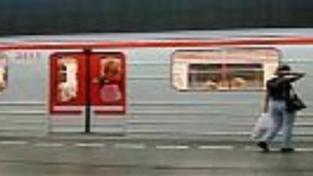 Zaběhnutý pes zastavil provoz metra