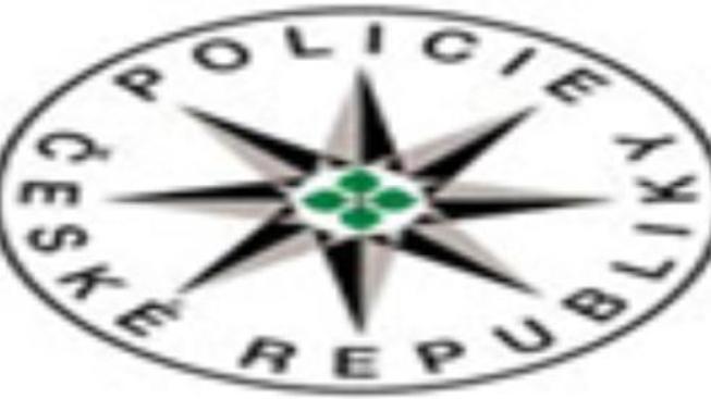 Policie udělala razii mezi neonacisty a zatýkala