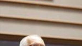 Papež příjme na konci května českého prezidenta
