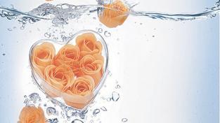 Nová soutěž o kosmetiku: Vyhrajte koupel plnou růží