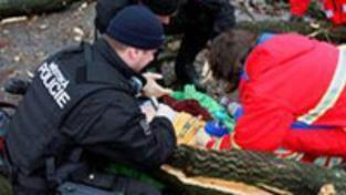 Pád stromu ve Zlíně má druhou oběť