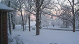 V Česku nasněží, mrazy budou silnější