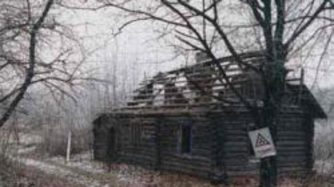 Černobylský Červený les