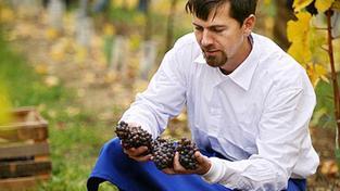 Jak chutná víno z roku 1884?