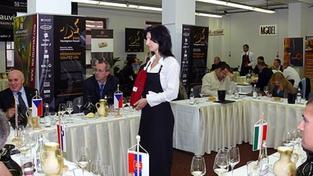 SAUVIGNON FORUM 2008, Mikulov