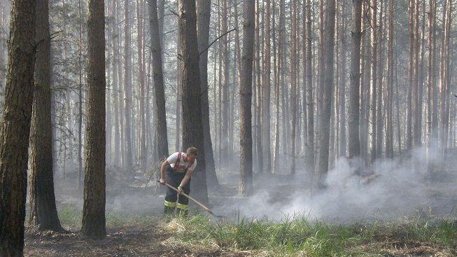 Hasiči za pomocí termokamer stále bojují s rozsáhlým požárem u Bzence