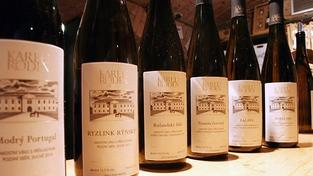 Přední vinař: Lidé jsou zahraničními víny přesyceni, vrací se k českým odrůdám