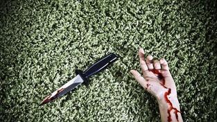 Za vraždu důchodce, který se po útoku udusil roubíkem, hrozí výjimečný trest