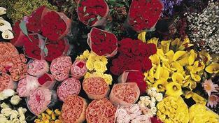 Kytice z řezaných květin potěší i mnohé muže