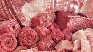 Průšvih nekončí, na český trh se dostalo koňské maso plné jedovatých léků