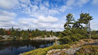 V šumavských jezerech už není život. Na vině je síra v ovzduší