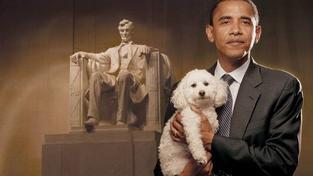 Proč němečtí prezidenti nemají psy?