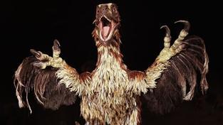 Ptačí dinosaurus používal své lesklé peří ke svádění
