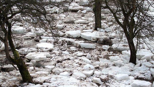 Ledové kry téměř rozmačkaly dva mladíky