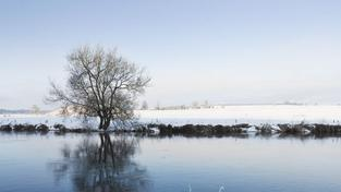 Rekordní noční mrazy byly tuto zimu zřejmě naposled