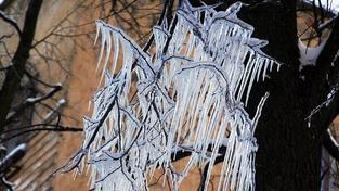 Rekordně mrazivé bylo i dnešní ráno, na Šumavě minus 10,9 stupně