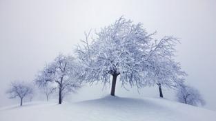 Mrazy vydrží do konce týdne, pak se oteplí až na +7°C