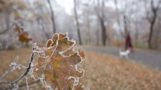 Zima se hlásí o slovo. Koncem týdne klesnou teploty až k -13 stupňům Celsia