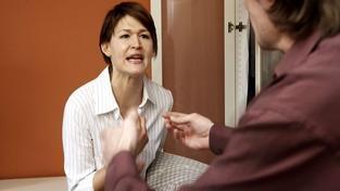 Co řeší pojišťovny? Problém s tchýní, manželkou i zvířaty