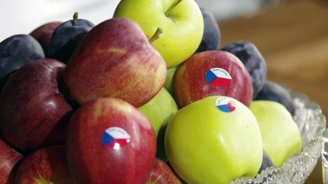 Sklizeň jablek bude letos bohužel podprůměrná