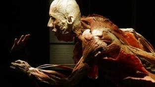 Výstava lidských těl