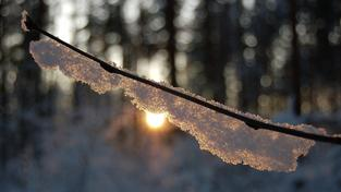 Zima (ilustrační foto)
