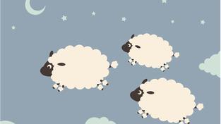 Proč musíme počítat ovečky