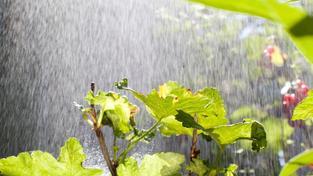 Jarní počasí