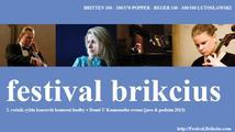 Violoncellista zahájí 2. ročník Festivalu Brikcius
