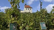 Víno a silniční běh? Mikulčice na jihu Moravy oslavily příchod věrozvěstů