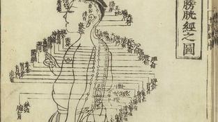 Tradiční čínská medicína (ilustrační fotografie)