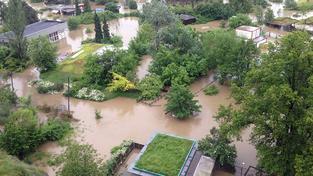 Zaplavená pražská ZOO