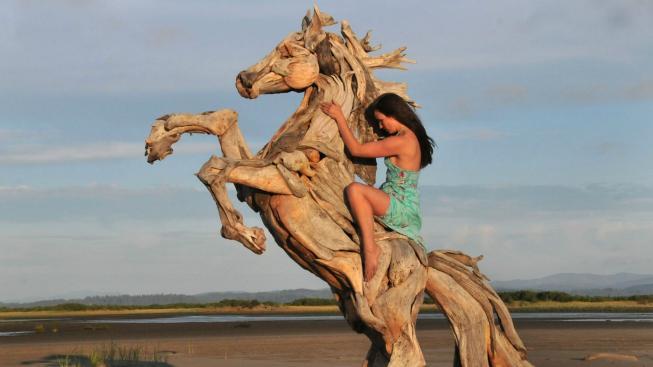 Američan vyrábí dechberoucí sochy z naplaveného dřeva