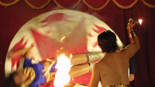 Představení v cirkuse