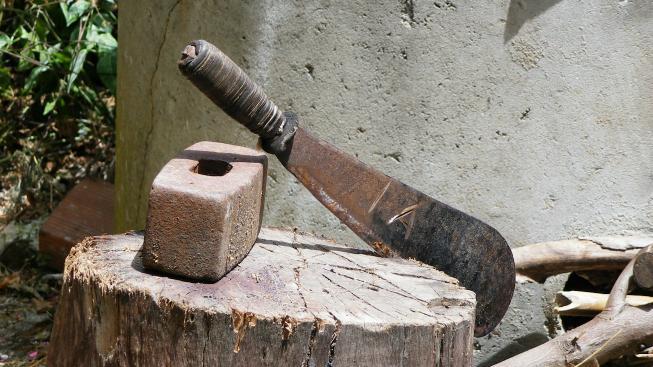 Mačeta, ilustrační foto